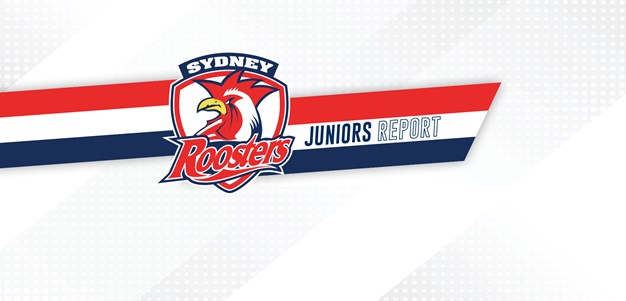 Juniors Report Round 6: SG Ball Roosters Rise to Second