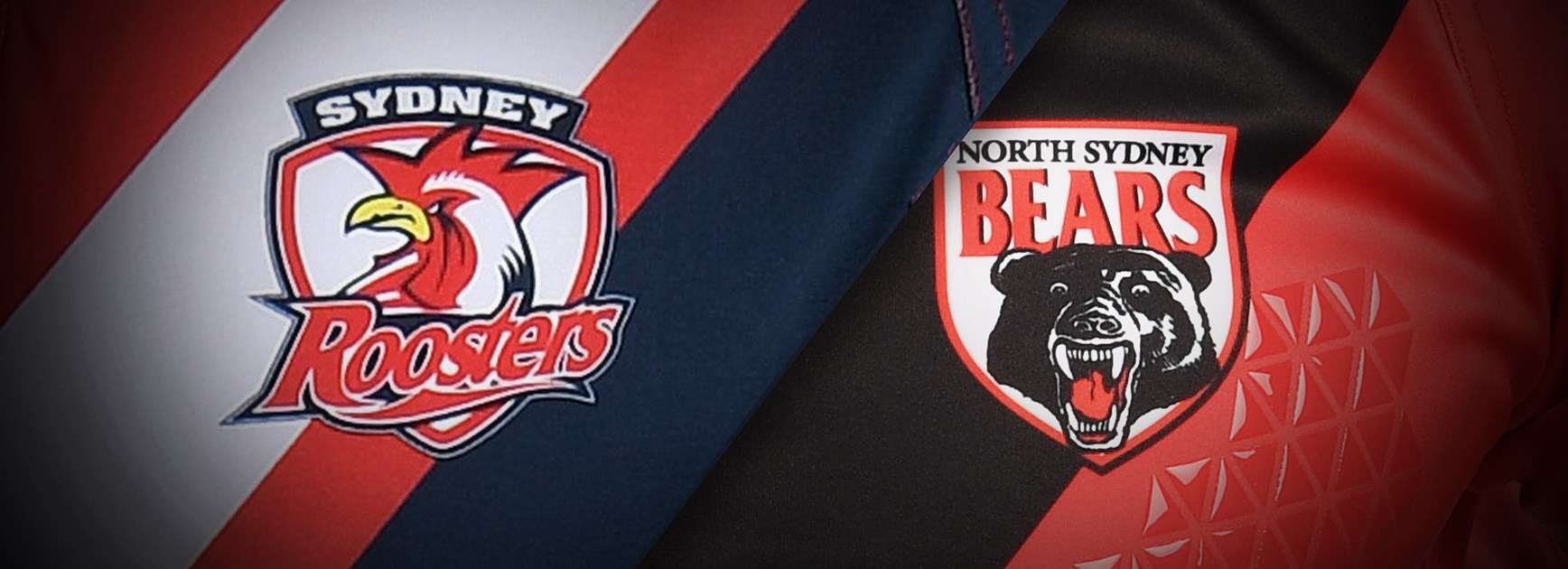 Sydney Roosters and North Sydney Bears form new alliance