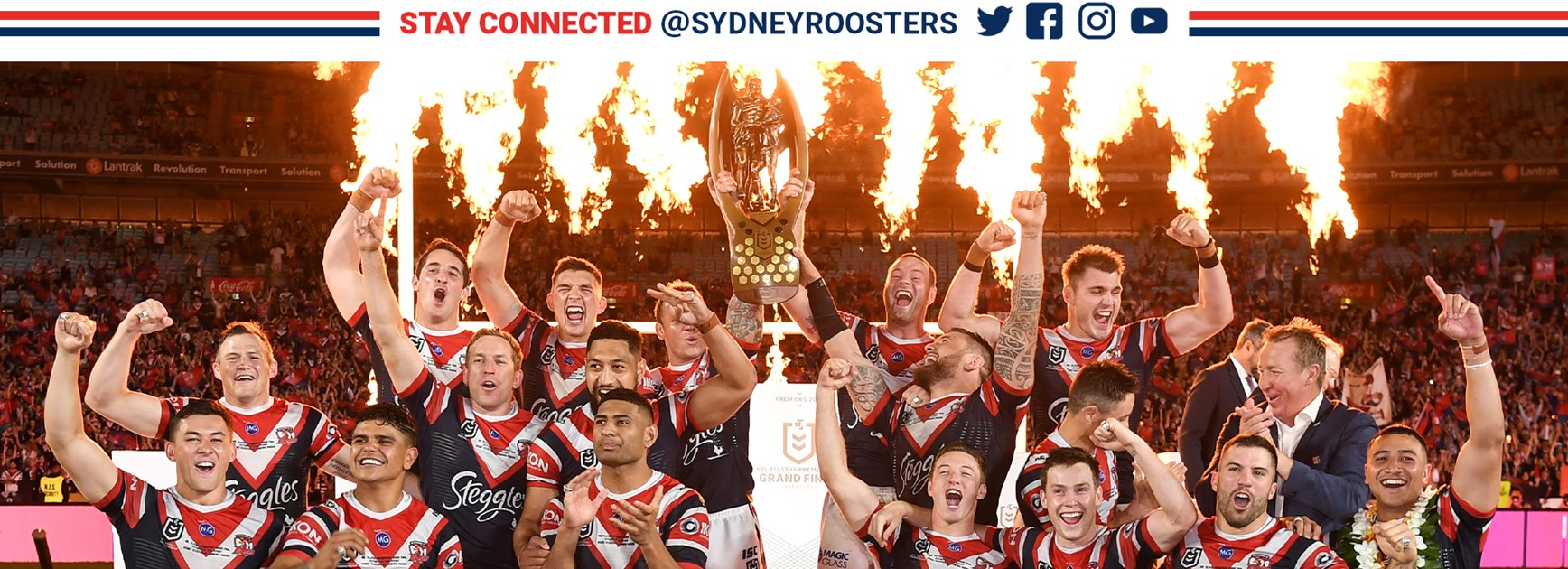 Roosters Video Chat Backgrounds