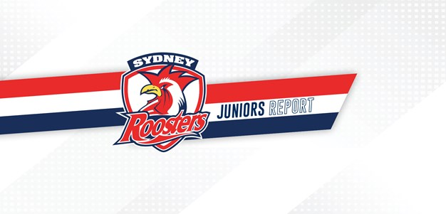 Juniors Report Round 7 Catch Up: Roosters All In for Junior Finals